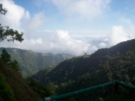 Reserva Cientifica Ebano Verde