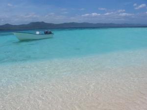 Beach and Island Eco Tours