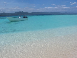 Beach and Island Eco Tours