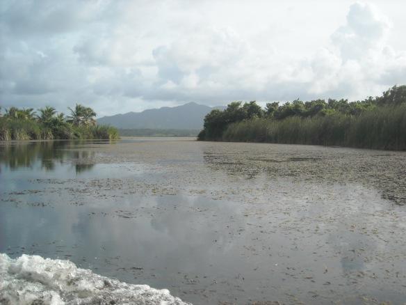 Resultado de imagen para Reserva cientifíca Laguna Rincón Redonda y Limón