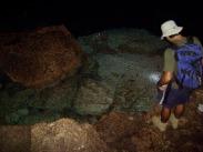 Cueva de Chicho, Parque Nacional del Este